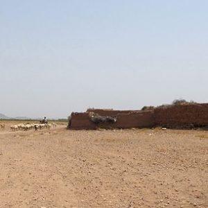 High Desert Soil